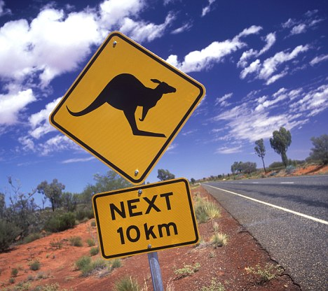 Australia Northern Territory outback Kangaroo road sign